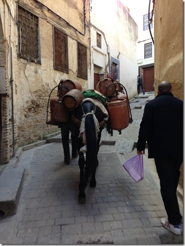 Water Delivery by Donkey