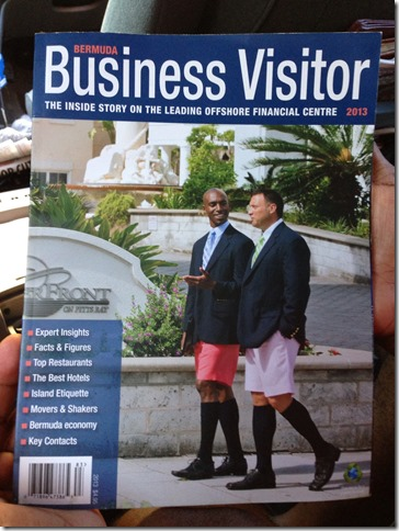 Bermuda Business Shorts