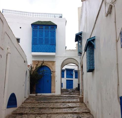 Sidi Bou Said, Blue and White houses in Tunisia