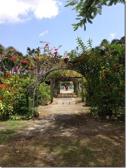 Guyana Gardens