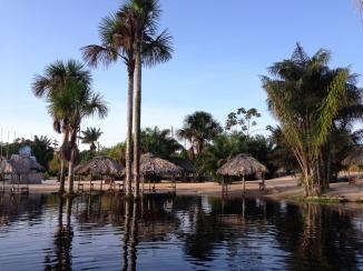 Guyana Black Water Creek and Beach
