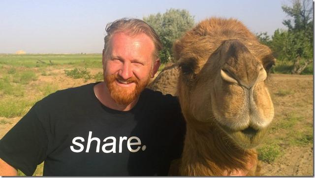 Turkmen Camel