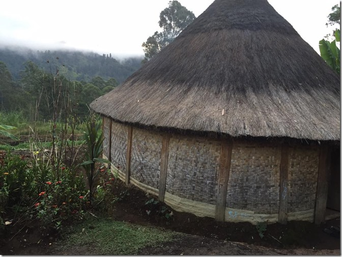 PNG traditional hut